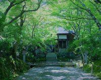 英語脳メルマガ 第03032号 Kyoto, which was the nation's capital for over a thousand years, offers a number of の意味は?
