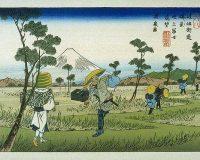 英語脳メルマガ 第03020号 While living in Japan has many benefits, one of the things I find most frustrating の意味は?