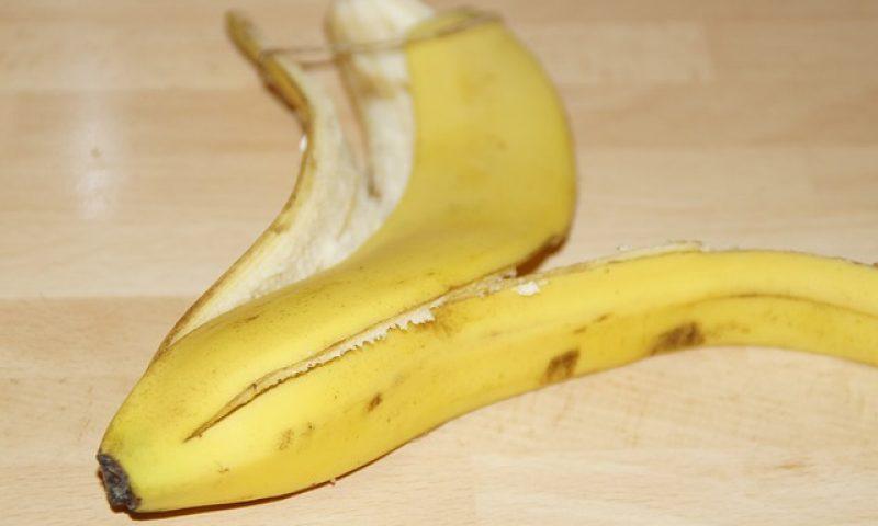 英語脳メルマガ 第03149号 Today, I actually slipped on a banana peel, cartoon-style, breaking my kneecap の意味は?