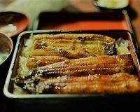 英語脳メルマガ 第03496号 Unagi is expensive to produce and costly to eat. の意味は?